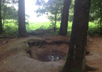 One of the foxholes dug by Easy Company